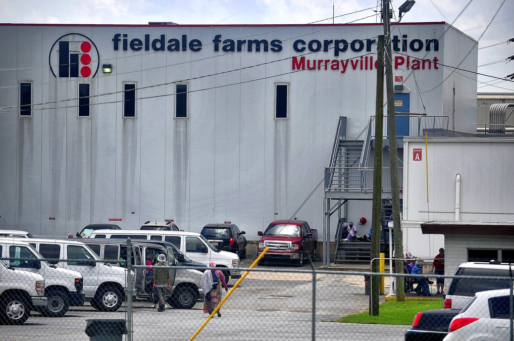 Fieldale needs 300 workers  Here's where they're looking