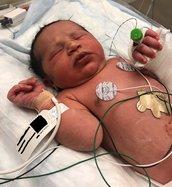 Photo Abandond Newborn.jpg
